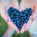 7 Alimentos purpura ricos en antocianinas para reforzar el sistema inmunitario